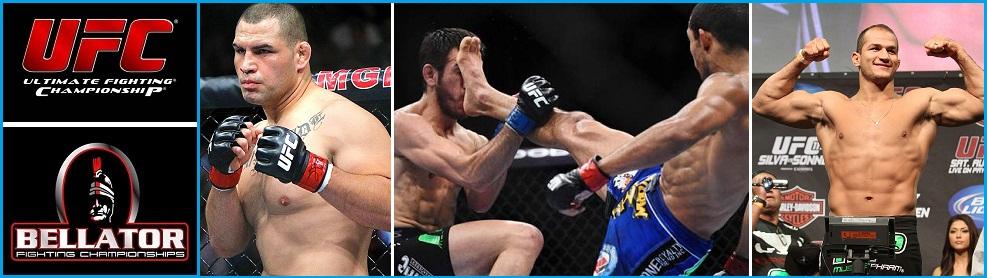 Бои без правил UFC, Bellator - Видео, расписание, прогнозы.